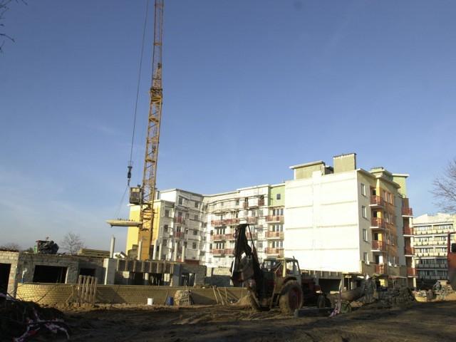 W tym roku rosnąć powinno także zatrudnienie m.in. w budownictwie