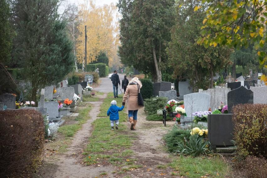 Tak w sobotę, 7 listopada, wygląda sytuacja na cmentarzu...