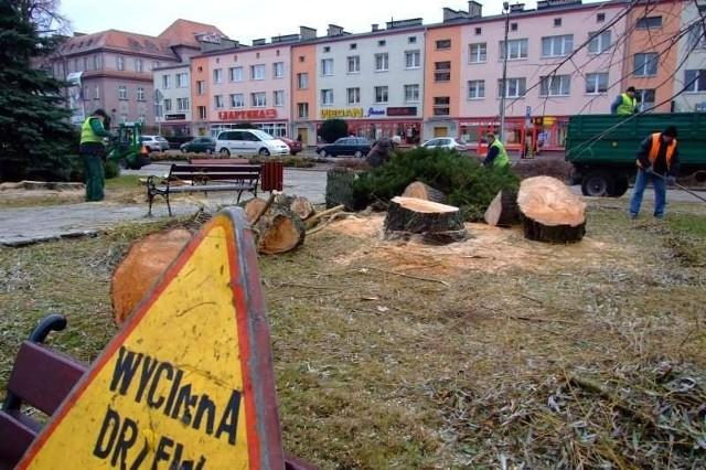 Wycinka drzew na strzeleckim Rynku.
