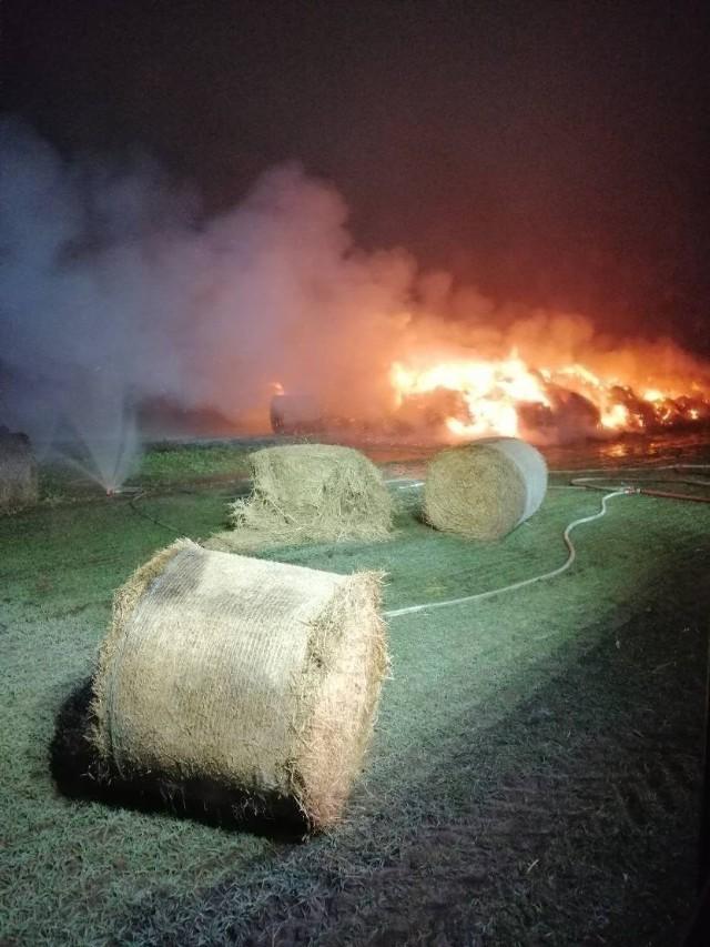 27-letni mieszkaniec gminy Szamotuły odpowie przed sądem w sumie za 14 podpaleń. Za zniszczenie mienia polskie prawo przewiduje do 5 lat więzienia.