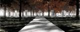 Wyłoniono koncepcję urbanistyczno-architektoniczną nowego cmentarza wojskowego Żołnierzy Wojska Polskiego na Westerplatte