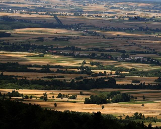 Taki jest widok ze szczytu Łysicy - do tej pory najwyższego w Górach Świętokrzyskich. Nowe badania wykazały jednak, że jest inaczej, a teraz zostało to zmienione w oficjalnych dokumentach. Palmę pierwszeństwa przejęła Góra Agaty.