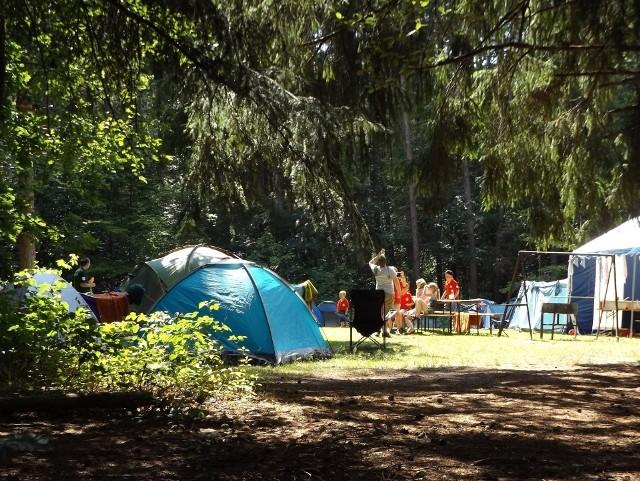 Pola namiotowe nad jeziorami w Lubuskiem. Zobaczcie, gdzie można pojechać pod namiot