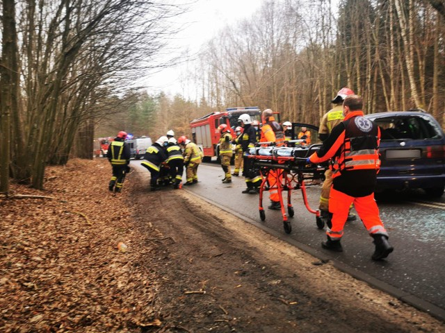 Wypadek między Koszalinem a Kłosem. Kierowca volkswagena uderzył w drzewo. Pasażerka trafiła do szpitala