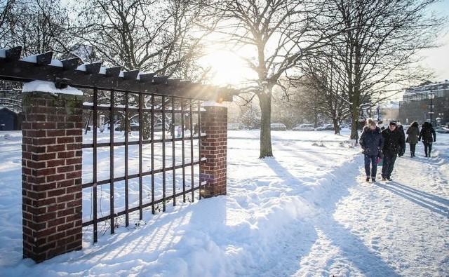 Pogoda na 1 listopada 2019. Sprawdź najnowsze przewidywania synoptyków pogody na 1 listopada 2019. Czy 1 listopada 2019 spadnie śnieg? Tak już bywało w ubiegłych latach