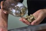 Kiedy Sejm zalegalizuje leczniczą marihuanę? [WIDEO]