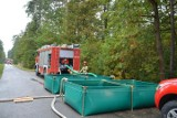 Strażacy z regionu radomskiego na manewrach w lesie koło Sadku w gminie Szydłowiec. Ćwiczyli wspólną akcję służb