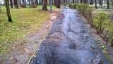 Stalowa Wola. Alejki w parku miejskim wymagają pilnej naprawy