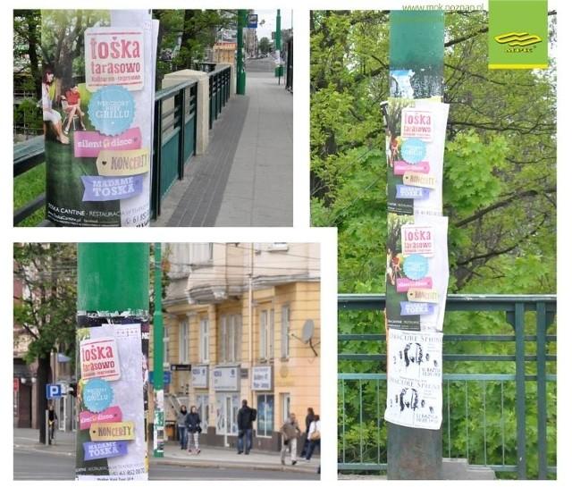 Tośka Cantine zanieczyszcza miasto plakatami