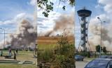 Pożar w Gniewinie (powiat wejherowski). Płonęło ponad 5 hektarów pola oraz ciągnik. Na miejscu 10 zastępów straży pożarnej! [zdjęcia]