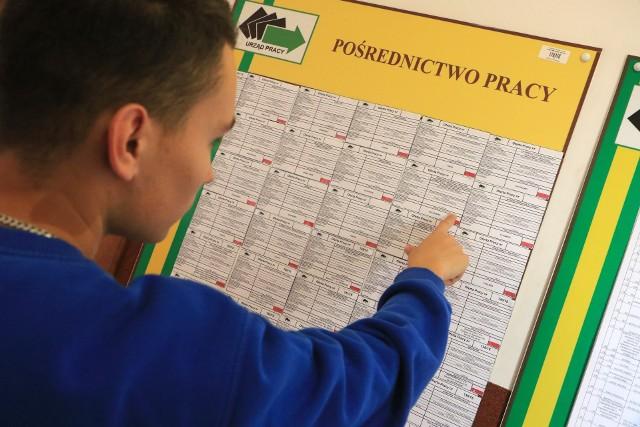 W projekcie mogą uczestniczyć osoby zarejestrowane w Powiatowym Urzędzie Pracy w Toruniu