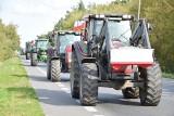 Protest rolników w Ostrołęce. 7.10.2020. Rolnicy blokowali drogę krajową nr 61. Zdjęcia, wideo