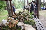 W Korzybiu rywalizowano w zbieraniu grzybów [ZDJĘCIA, WIDEO]