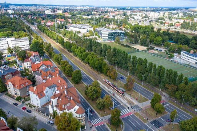 Zabytkowa aleja lipowa w Gdańsku