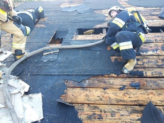 Strażacy z Golubia-Dobrzynia nie tylko pomagają podczas walki z zagrożeniami, ale także prowadza szeroka kampanię informacyjną