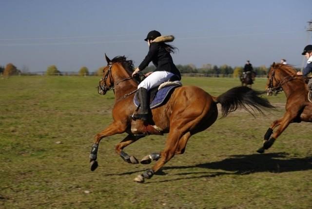 Magda Kostro na koniu Fuks ze stajni Magdalenka w Krasowie Wólce