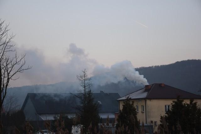 Walka ze smogiem. W kilku podkrakowskich gminach wprowadzą zakaz palenia węglem