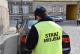 Opole. Tyle zarabiają funkcjonariusze Straży Miejskiej. Radny PiS: Czy odchodzą do innych służb?