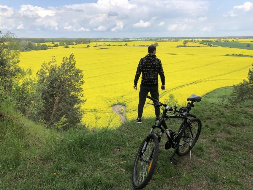 Rowerem przez Wielkopolskę: Poznajcie najciekawsze trasy rowerowe gminy Pniewy