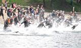 IV Iron Dragon Cross Triathlon. Dorośli pobiegli nad zalewem w Kryspinowie [ZDJĘCIA]