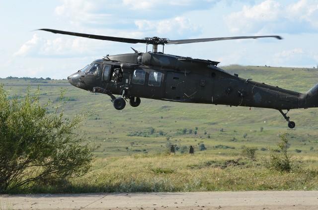 Black Hawk - zdjęcie ilustracyjne.