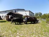 Kujawsko-Pomorskie. Wakacje spędzamy na wsi, tłumy turystów w gospodarstwach agroturystycznych