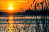 Najpiękniejsze jeziora w Podlaskiem. 20 miejsc, które warto odwiedzić podczas weekendu [29.06.2020r.]