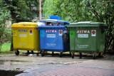 Segregacja śmieci. Oferty dla firm