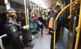 Kontrole w pojazdach MPK Poznań - straż miejska sprawdza, czy pasażerowie noszą prawidłowo maseczki