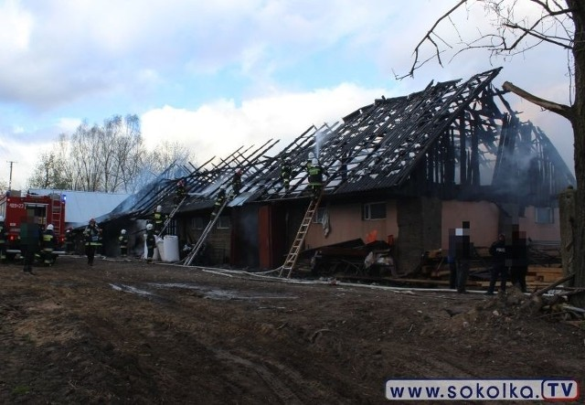 Pożar obory w Szyszkach. Straż pożarna ratowała byki