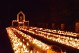 Zobacz nocne zdjęcia cmentarza w Proszowicach