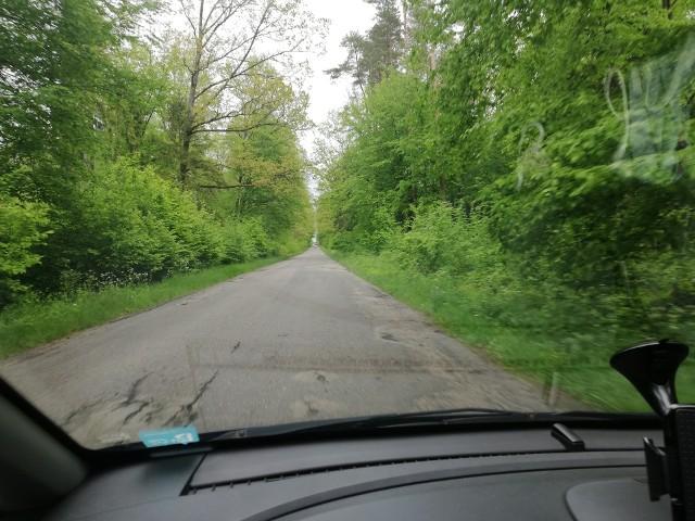 Odcinek drogi wojewódzkiej nr 687 na odcinku wsi Zwodzieckie do miejscowości Świnoroje.