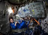 """Kwarantanna jak pobyt w kosmosie? Astronauta radzi, jak przetrwać epidemię koronawirusa. Zadbaj o siebie i swój """"statek kosmiczny"""""""
