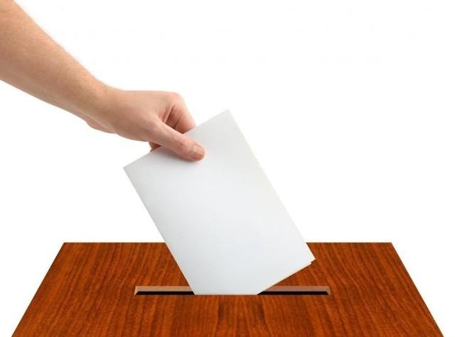 Wyniki wyborów do europarlamentu 2019 - Bielsk Podlaski (powiat bielski)
