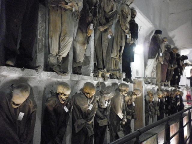 """Przewodniki przestrzegają, że nie jest to wizyta dla ludzi o słabych nerwach. Ale i tak znaczna część gości traktuje wizytę w katakumbach kapucynów w Palermo jako gwóźdź programu zwiedzania stolicy Sycylii. Wiele wycieczek traktuje to miejsce jako punkt kulminacyjny wędrówki po Palermo. Wchodzimy wykutą w białym wapieniu klatką schodową. I natychmiast zostajemy otoczeni przez tłum postaci jak z horroru. Niektóre są już odzianymi w dawne szaty szkieletami, na innych widać włosy, skórę. Zabalsamowane zwłoki, stoją lub leżą. Są wszędzie, nie można nawet uciec wzrokiem. Przy odrobinie wyobraźni można nawet dostrzec rysy twarzy, a w nich wpatrujące się w nas oczodoły. I w tym miejscu część zwiedzających już wymięka. Inni zaciskają zęby, kobiety krzyczą... Nikt dokładnie nie policzył ile zwłok kryje labirynt, ale szacuje się, że znajduje się tutaj około 8 tys. zmumifikowanych ciał. Początkowo trafiali tutaj tylko mnisi. Jednak ten pomysł tak się spodobał, że zażądali umieszczenia tutaj swoich doczesnych szczątków co bogatsi mieszkańcy Palermo. Okazało się bowiem, że w krypcie panuje tak specyficzny mikroklimat, że zwłoki nie ulegają rozkładowi. Niechętnie, ale kapucyni otworzyć musieli katakumby dla pogrzebów świeckich. Horror? To nie wszystko. Obywatele Palermo nie tylko wcześniej kupowali sobie miejsca, ale w konkretnych, """"swoich"""" niszach przychodzili postać za życia. Aby zobaczyć jak spędzą ich ciała całą wieczność... A później rodziny przychodziły tutaj z koszami piknikowymi, aby spędzić trochę czasu z ukochanymi zmarłymi, zapytać ich o radę. Pamiętaj, że umrzesz... Tak, tutaj ta sentencja pasuje idealnie. Przed śmiercią lokatorzy katakumb zapisywali w testamentach, a jakim ubraniu ich pochować, czy należy zmieniać co jakiś czas strój... Stąd dziś poznajemy nie tylko imiona i nazwiska zmarłych, ich profesje, ale nawet ówczesną modę. I tajemnice. Najbardziej niesamowita historia towarzyszy dziełu Alfredo Salafiego - mumii dwuletniej Rosalii Lombardo, zwanej Śpiącą Król"""