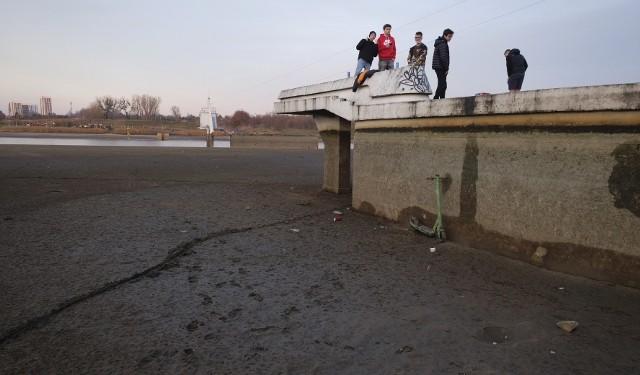 Od listopada trwa operacja oczyszczania dna jeziora Maltańskiego w Poznaniu wykonywana przez Poznańskie Ośrodki Sportu i Rekreacji. Czyszczenie jeziora co cztery lata jest konieczne, aby znajdujący się tu tor regatowy miał właściwą głębokość. Dzięki temu też sinice nie powinny tu tak często zakwitać, co powinno ucieszyć amatorów letnich kąpieli w jeziorze. Działania te pozwalają także na oczyszczenie dna zbiornika ze śmieci i namułów. Obecnie w jeziorze niemal już nie ma wody. Niecodzienny widok chętnie przychodzą podziwiać poznaniacy. Zobacz zdjęcia ---->