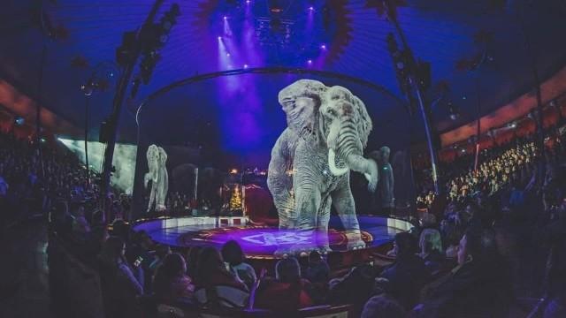 Cyrk Wictoria jest pierwszym w Polsce i zaledwie trzecim w Europie miejscem, gdzie w występach zwierząt biorą udział hologramy