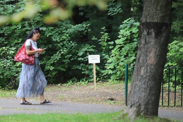 Uwaga! Kleszcze: chorzowskie zoo ostrzega ustawiło specjalne tablice ostrzegawcze.Zobacz kolejne zdjęcia. Przesuwaj zdjęcia w prawo - naciśnij strzałkę lub przycisk NASTĘPNE