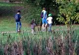 Jesienny spacer w woj. zachodniopomorskim? Ogród Dendrologiczny w Glinnej także jesienią zachwyca! Zobacz ZDJĘCIA z Nadleśnictwa Gryfino