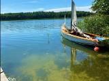 Domy nad jeziorem na sprzedaż. Najciekawsze oferty z Wielkopolski w portalu otodom.pl [Czerwiec 2021]