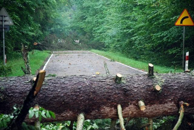Zablokowan droga do Białowieży.