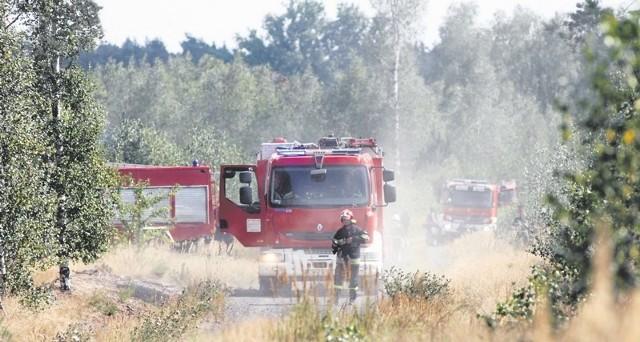 W lasach obowiązuje obecnie trzeci, czyli najwyższy stopień zagrożenia pożarowego