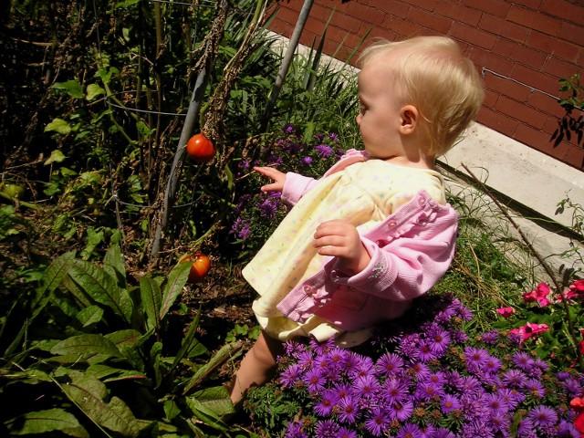 Дети в саду Дети очень весело собирают спелые овощи и фрукты, поэтому в небольшом саду стоит посадить клубнику и помидоры черри.