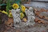 Zielona Góra. Tak wyglądają groby malutkich dzieci, które na cmentarzu przy ul. Wrocławskiej pochowano kilkadziesiąt lat temu