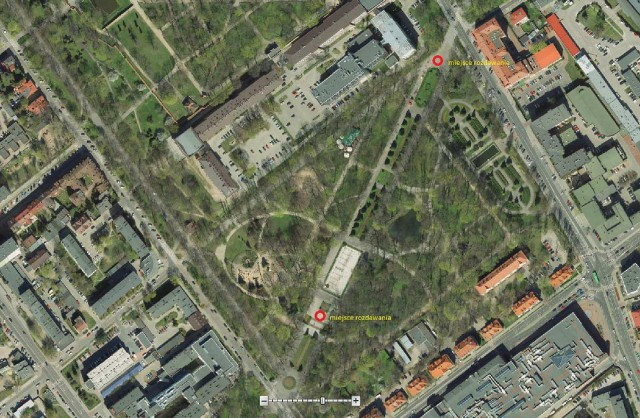 W piątek na Plantach magistrat rozda dwa tysiące drzewek