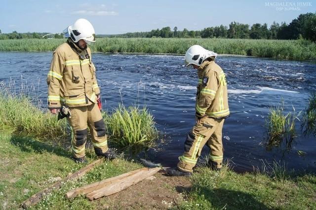 Przyducha zabiła tysiące ryb. Na szczęście poziom tlenu w podlaskich rzekach wzrasta.