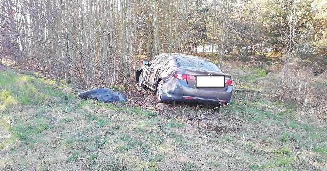 W Nowej Dąbrowie 80-letni kierowca zasnął za kierownicą. Auto wypadło z drogi