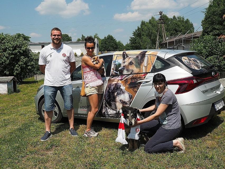 Siatkarki ŁKS Commercecon Łódź po raz kolejny wspierają bezdomne psy z łódzkiego schroniska przy ul. Marmurowej