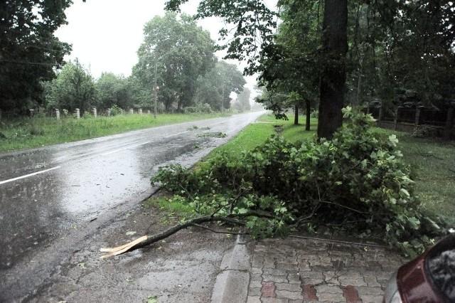 Opady deszczu wyniosą od 10 do 30 mm, lokalnie do 40 mm, a wiatr osiągnie w porywach od 65 do 90 km/h. Obowiązuje pierwszy stopień zagrożenia. Kierowcy wybierający się poza miasto powinni zwrócić szczególną uwagę na drogę.