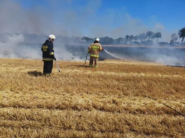 Rolnicy, którzy w niedzielę, 30 czerwca stracili swoje plony liczą straty. Ogromny pożar, który zajął 170 hektarów i kilka gospodarstw rolnych, wybuchł na terenie powiatu gostyńskiego (objął tereny wsi Dusina, Daleszyn).